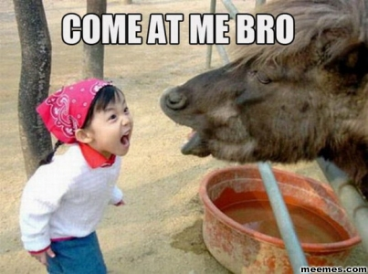Angry-Chinese-Girl-Vs-Cow-Come-at-me-Bro-Funny-meme